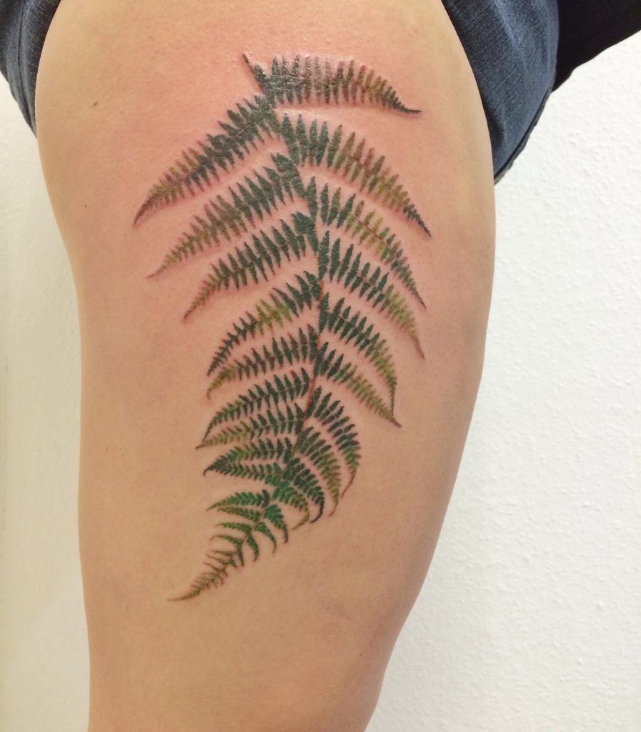 Farn Tattoo